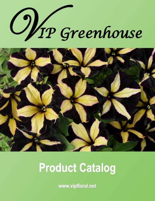 2013 Wholesale Product Catalog