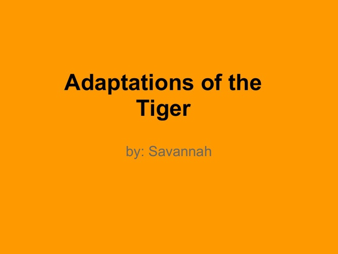Adaptation for the tiger