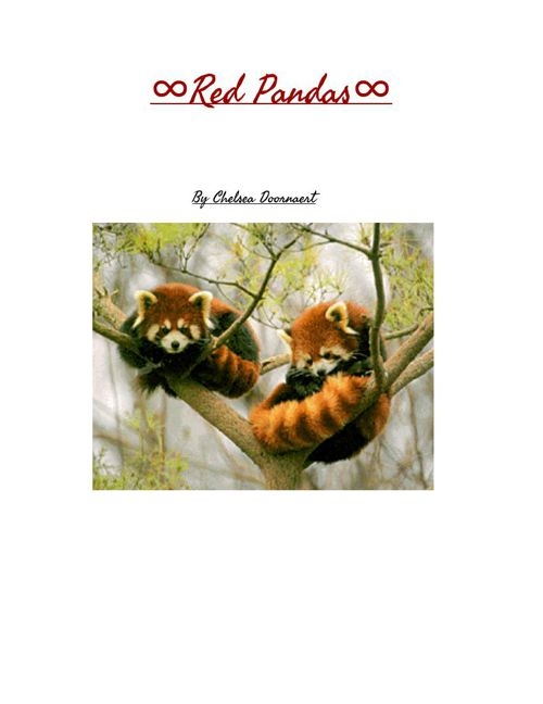 Red Panda Book