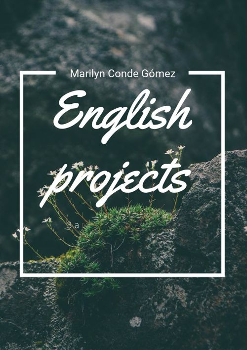 englisn projects