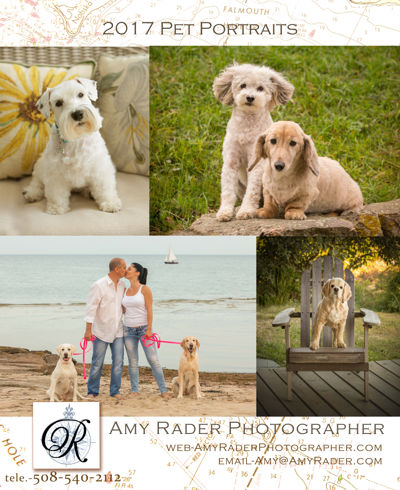 2017 Pet Portrait Pricing