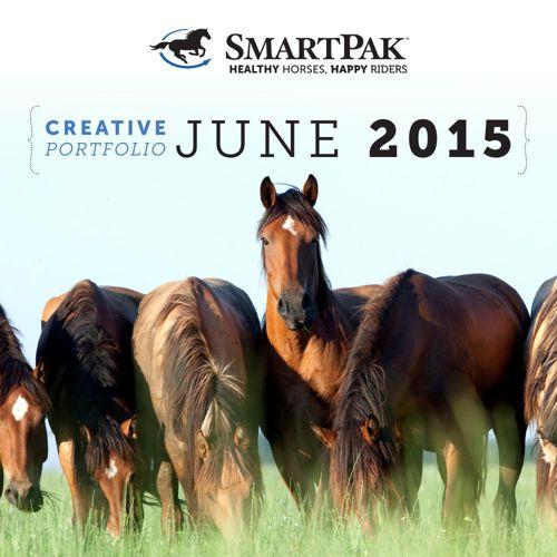 June 2015 Creative Portfolio
