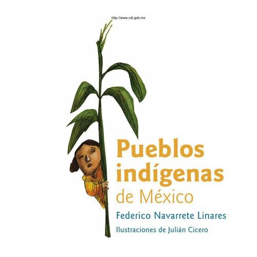 pueblos_indigenas_mexico_navarrete_c1