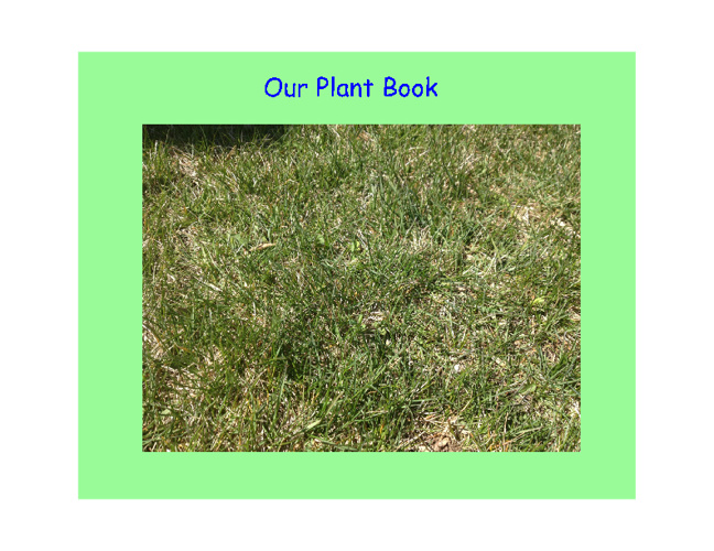 Our Plant Book