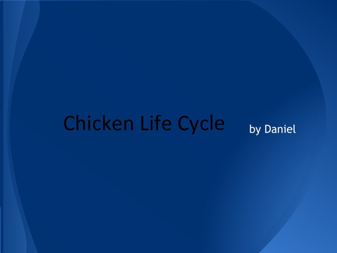 Daniel's Chicken Life Cycle