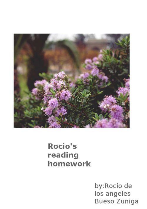 Rocio's reading homework