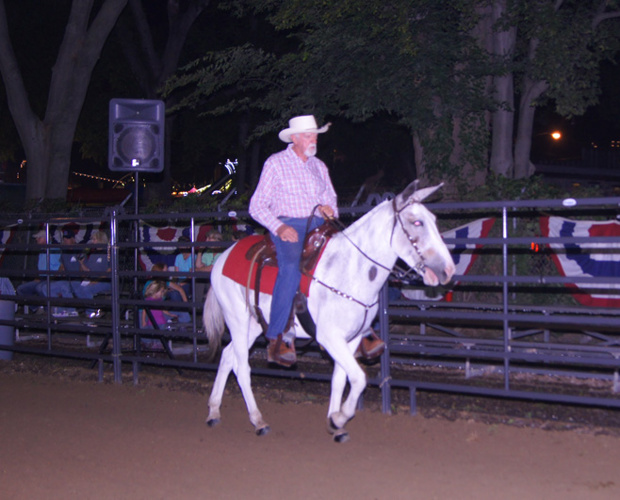 2014 TN State Fair AGMA Mule Show, Book 2