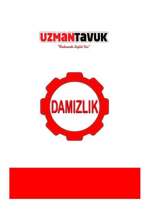 DAMIZLIK