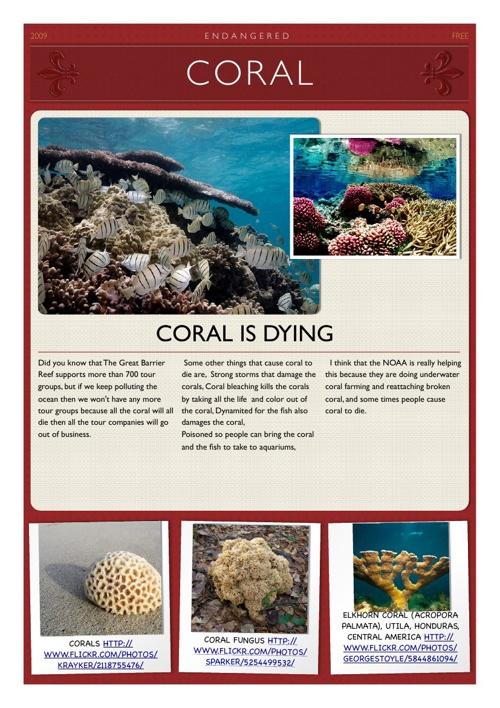 Coral by Kiera