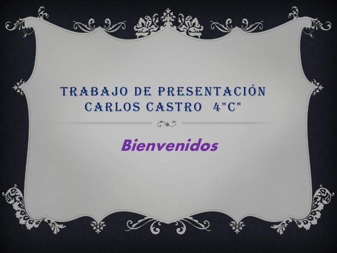 Trabajo de presentación Carlos Castro