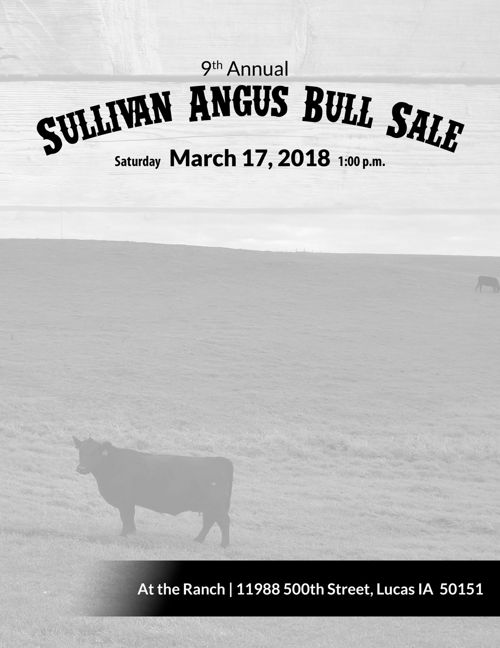 SJS Cattle Co Angus Bull Sale Catalog