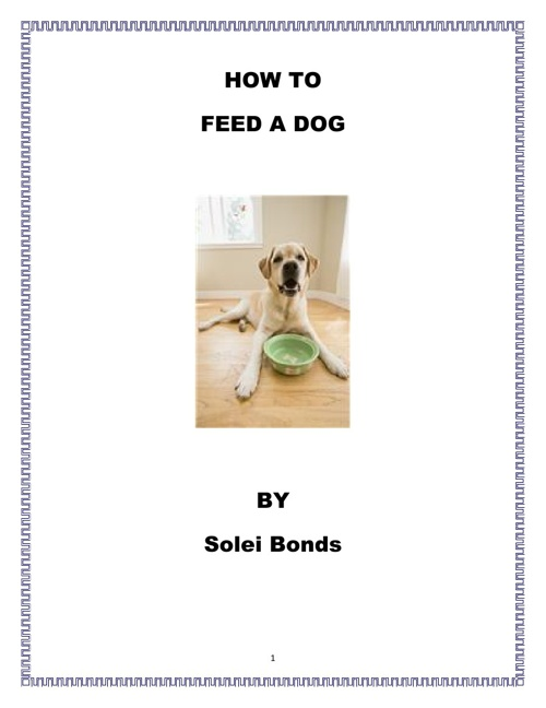 How to Feed a Dog by Solei Bonds