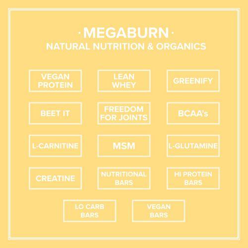MegaBurn-Brochure