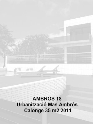 Rehabiliacio_Ambros