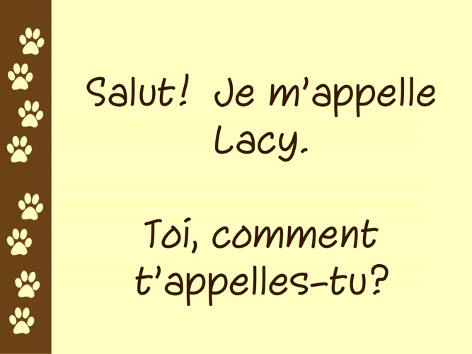 Lacy book French