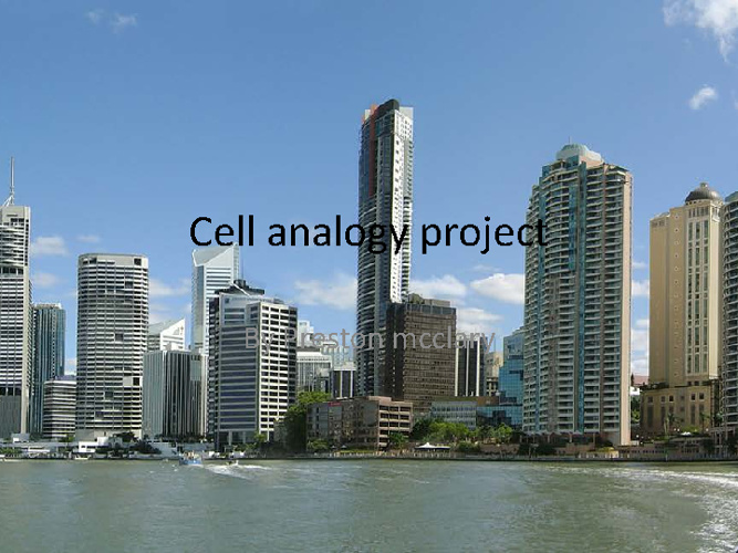 cell analogy project