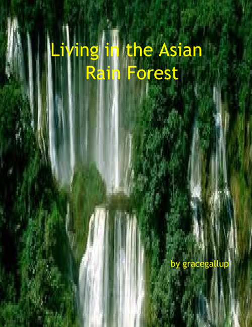 Living in Asian Rainforest by Grace