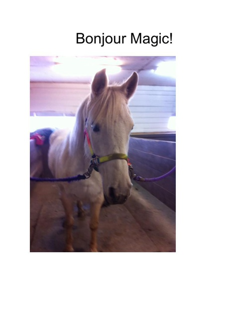 Bonjour Magic!