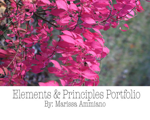 Marissa Ammiano Elements &Principles Portfolio