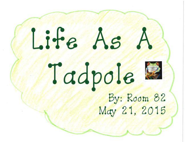 Life As A Tadpole