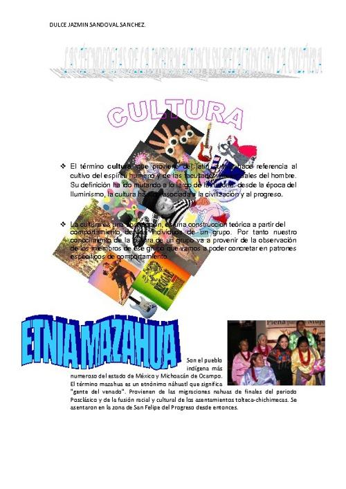 LAS TECNLOGIAS DE  INFORMACION Y SU RELACION CON LA CULTURA