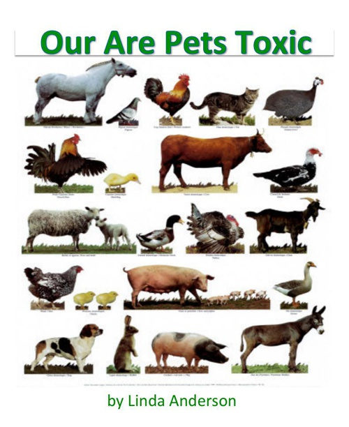 Our are Pet Toxic by linda anderson copy
