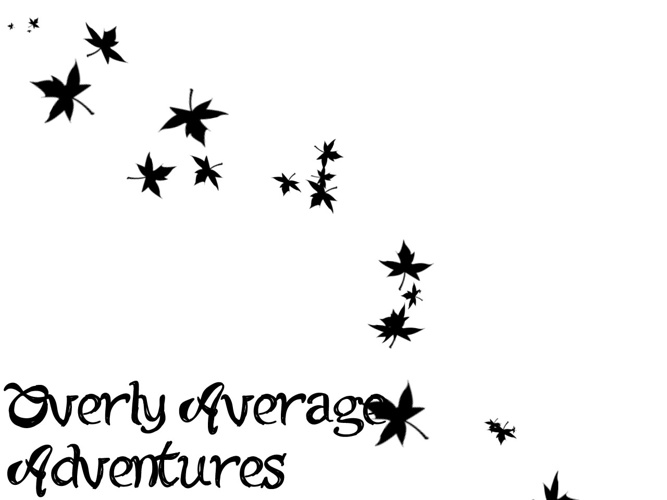 Overly Average Adventures