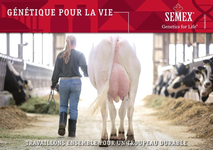 Semex Nieuwsbrief Wallonië december 2015