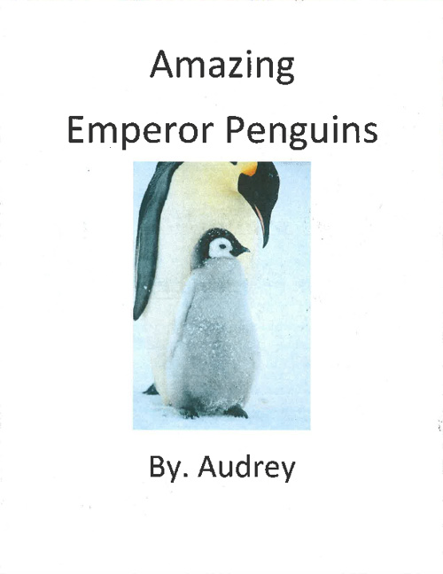 Penguins by. Audrey