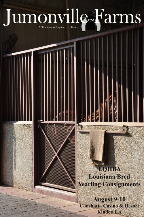Jumonville Farms LQHBA Yearling Preview