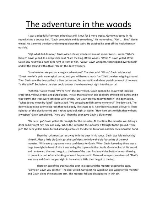 The adventure in the woods