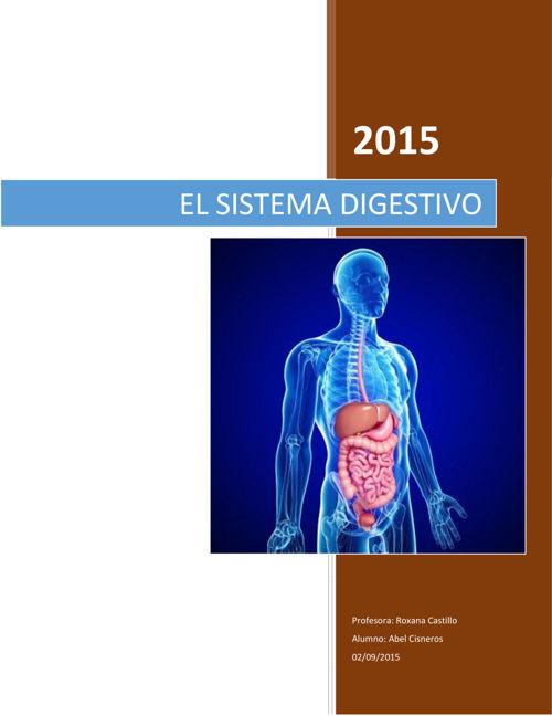 Sistema Digestivo para formatear pdf