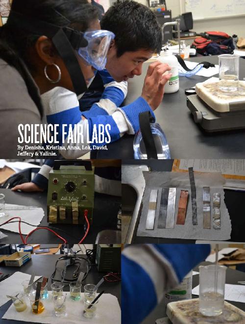 Science Fair Labs