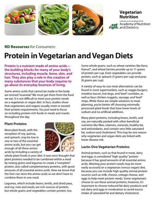 Protein-Vegetarian-Nutrition-2