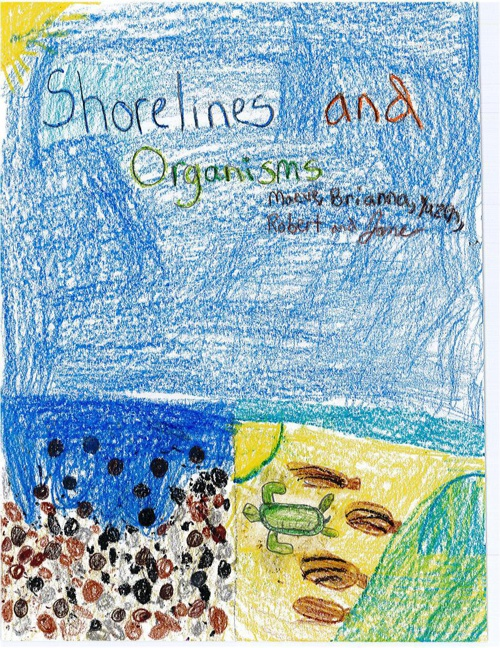 Shoreline and Organisms by Maeve, Brianna, Yazen, Robert, & Jane