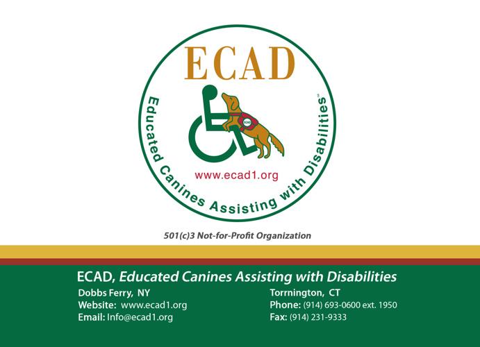 """ECAD's """"Memories in the Making"""" Photobook"""