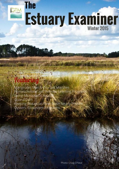 Winter 2015 GTM Research Reserve Newsletter