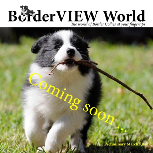 BorderVIEW World preview edition