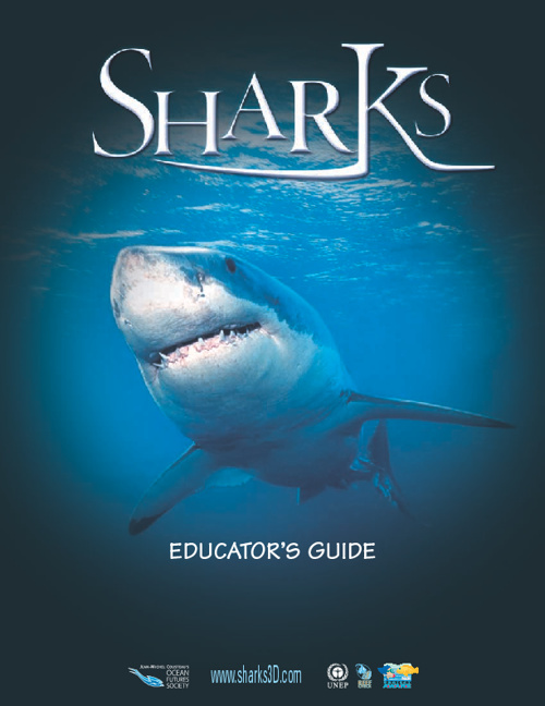 Sharks Educator Guide