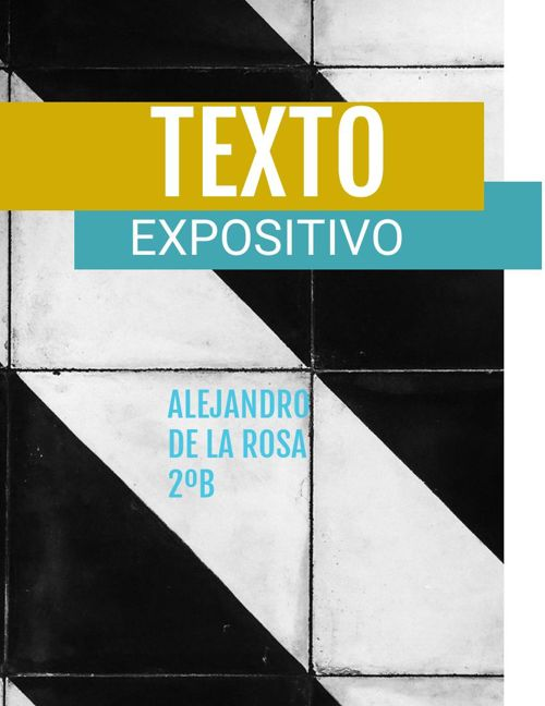 texto expositivo pdf 4