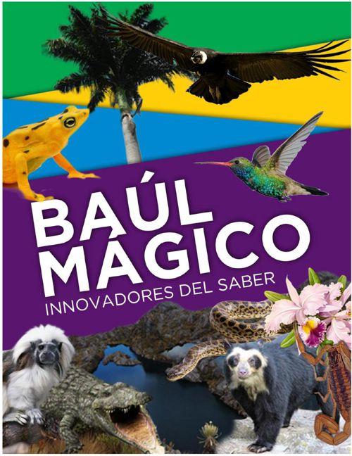 INSTRUCCIONES GENERALES - BAÚL MÁGICO