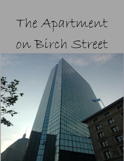 The Apartment in Birch Street