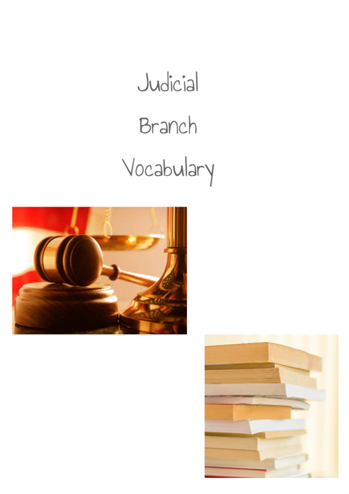 Judicial Vocab