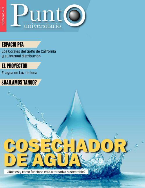 Punto Universitario 207