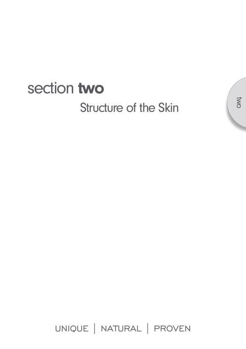 Monu therapis manual - section 2 structure of the skin
