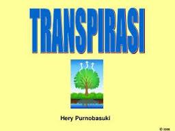 transpirasi9