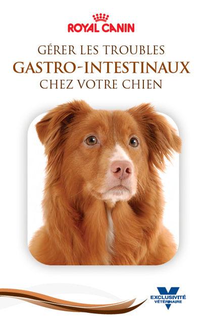 FR_SKW377_ Canine_GI