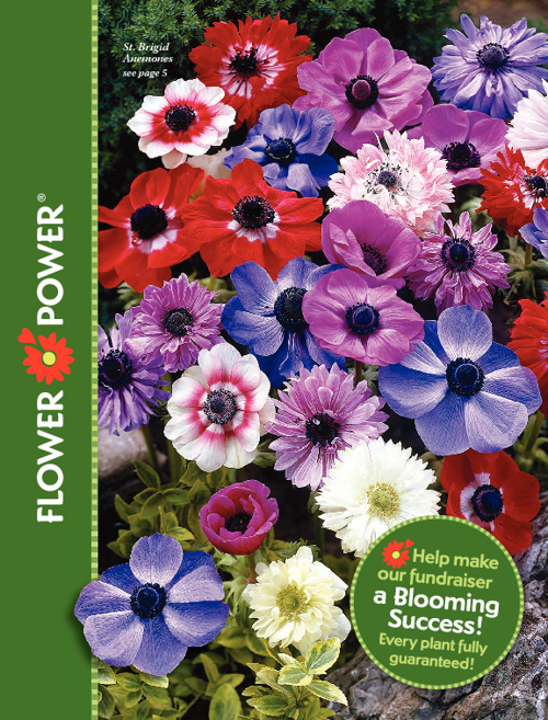 Flower Power Spring 2011 Catalog Test 1