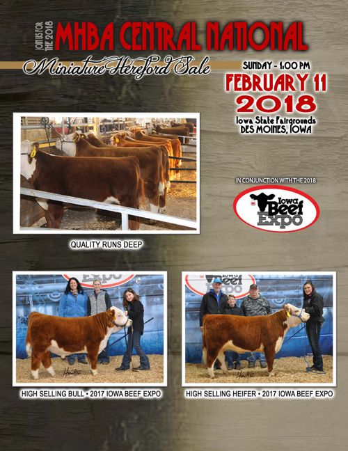 MHBA Central National Miniature Hereford Sale