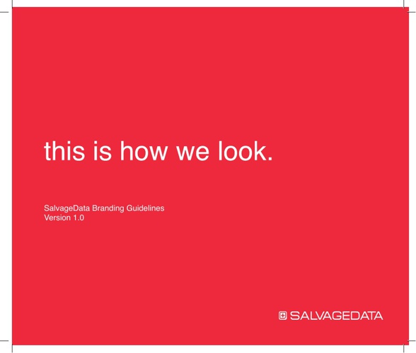SalvageData brand guidelines